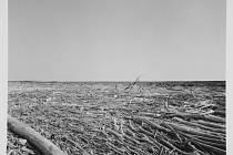 ČERNÁ A BÍLÁ. V černobílých fotografiích čtvercového formátu umístil Jedlička horizont krajiny  vždy na střed záběru.