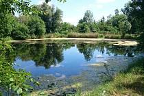Holásecká jezera v Brně.