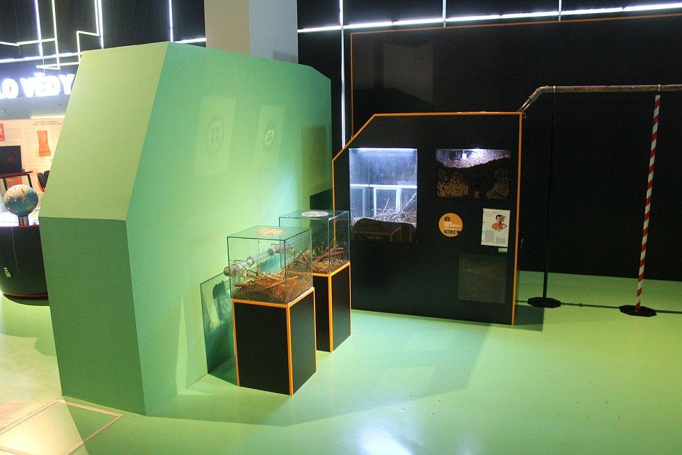 VIDA! je zábavní vědecký park u brněnského výstaviště.