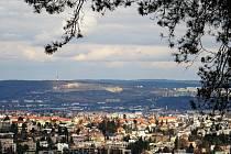 Velikonoční vycházka k Kohoutovic do Žebětína nabída výhledy na brno i přírodu v oboře Holedná.