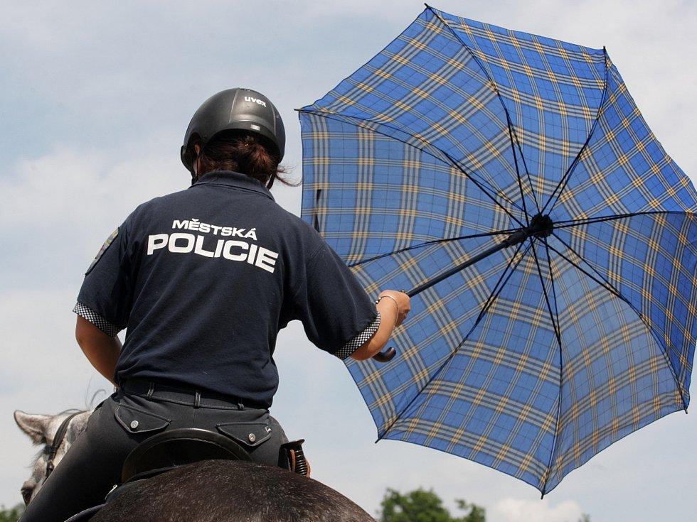Přehlídku jezdeckých policistů z celé České republiky viděli v sobotu návštěvníci na Mezinárodním policejním mistrovství v jezdectví. V jezdeckém areálu Panská Lícha v brněnské Lesné si zasoutěžili ve skokovém derby nebo třeba policejním parkuru.