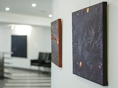 Výstavu brněnské autorky Bohuslavy Olešové, Jaroslava Hamži a Zdeňka Hamži hostí foyer činoherní scény Městského divadla Brno. Výstava má název Magma Now a odkazuje k pojmenování umělecké skupiny Magma, kterou tvoří právě trio jmenovaných autorů.