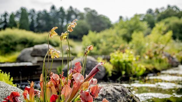 Třebíč vstoupila do Společnosti pro zahradní a krajinářskou tvorbu