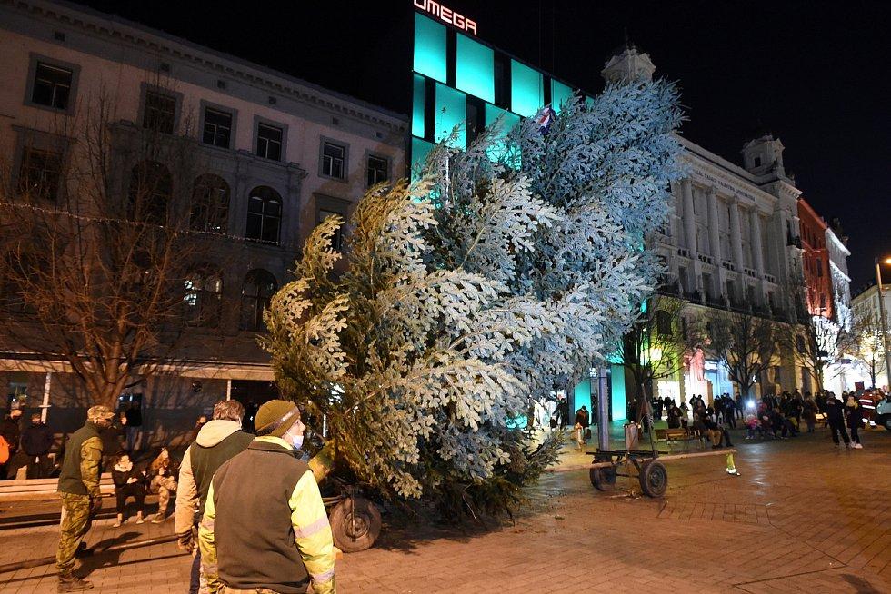 Na brněnském náměstí Svobody už stojí vánoční strom.
