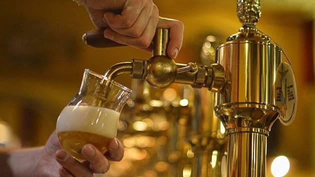 Bítovský polotmavý Tesák má zlato ze soutěže piv