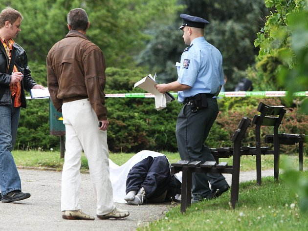 Mrtvého muže našli brněnští policisté v parku na Kraví hoře.