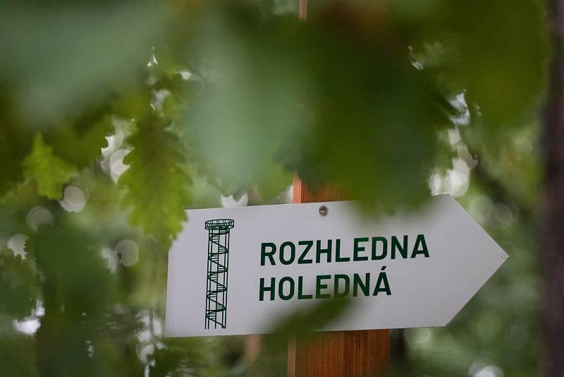 Zvěř v oboře Holedná v Brně.