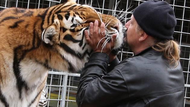 Pokus o rekord udržet hlavu v tygří tlamě déle jak čtyřiadvacet vteřin nevyšel