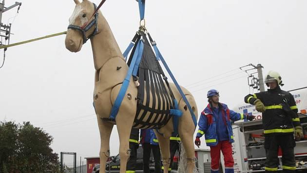 Hasiči se v brněnské Líšni učili používat speciální postroj pro velká zvířata, kterým je možné vyprostit je z jam, studen nebo přemístit ze země do přepravníku. Využili přitom vůbec poprvé novou maketu koně.