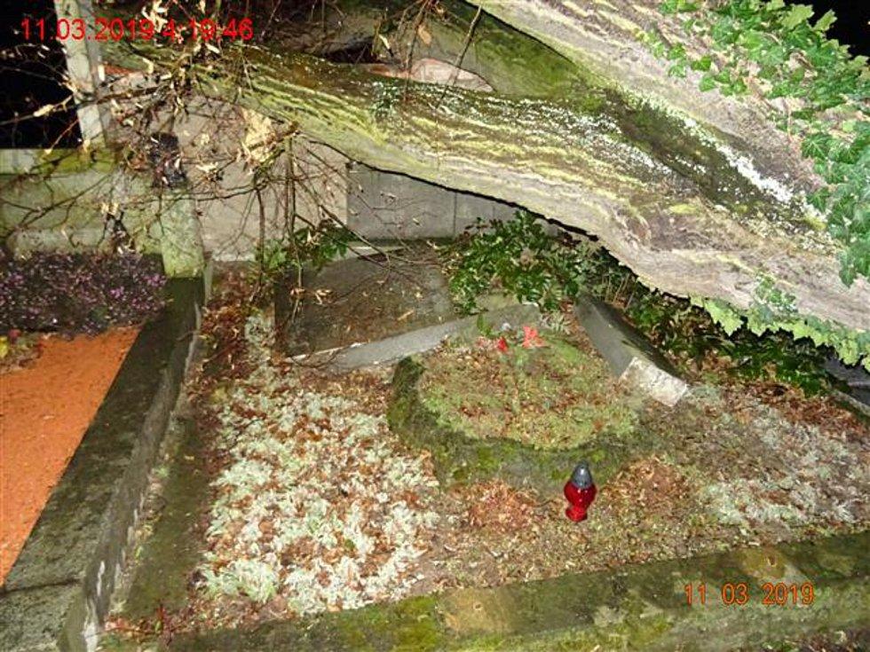 Vyvrácený strom na hřbitově v brněnské Myslínově ulici poničil několik hrobů.