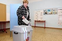 Senátní volby v Brně.