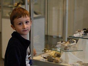 Výstaviště ukazuje krásu minerálů z celého světa. Děti se naučí poznávat fosilie