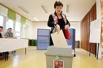 Volby v brněnském Novém Lískovci.