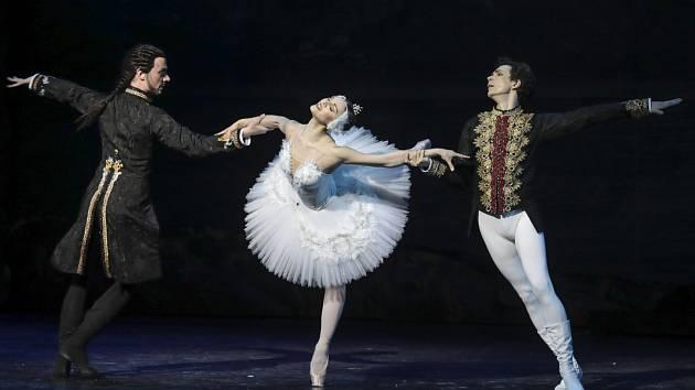 Balet baletů je zpátky v Brně. V Janáčkově divadle odpremiérovali Labutí jezero