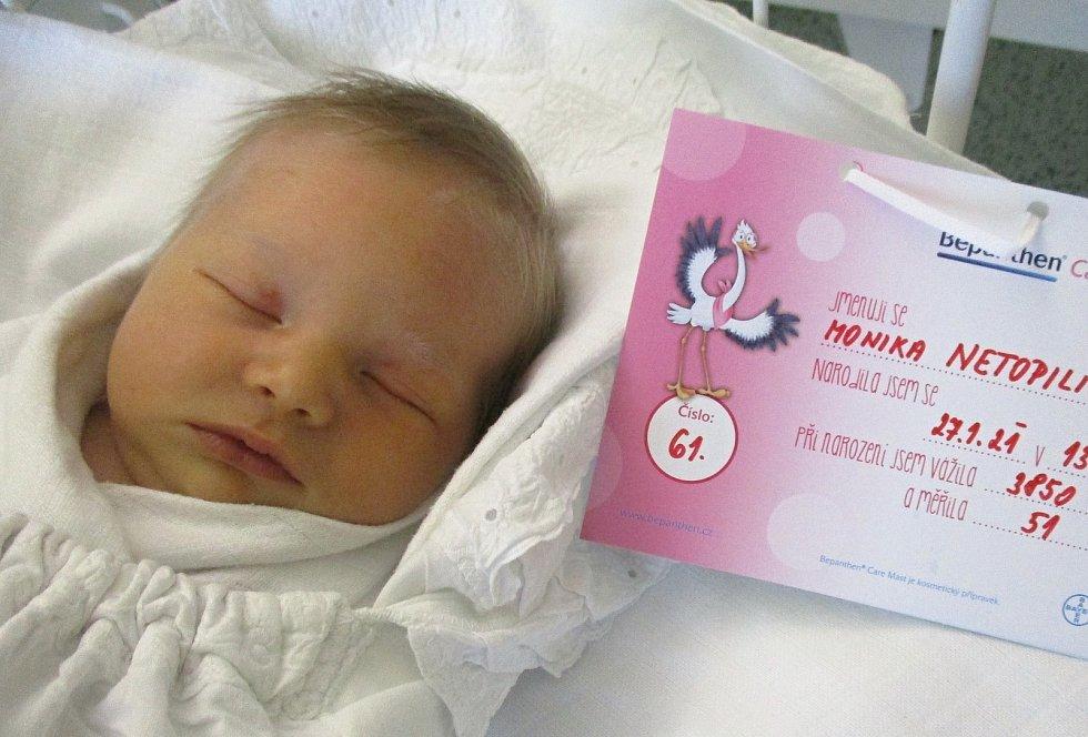 Monika Netopilíková, 27. 1. 2021, Velké Bílovice, Nemocnice Břeclav, 3850 g, 51 cm