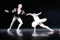 Muži v balerínách tančí v Janáčkově divadle