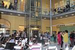 Knihovna Jiřího Mahena hostí putovní výstavu věnovanou Rychlým šípům.
