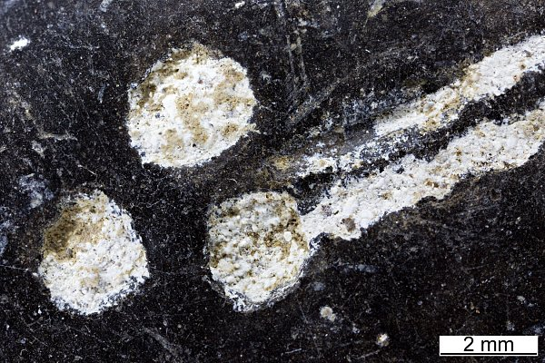 Archeologové zjistili, že ipravěcí lidé ve střední Evropě znali sádru a používali ji při výrobě keramiky.