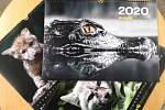 Zvířecí obyvatelé brněnské zoologické zahrady jsou hlavními hvězdami kalendáře zoo pro rok 2020.