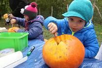 Lidé slavili příchod podzimu. Vyřezáváním dýní a ochutnávkami koláčů.