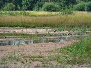 Zemědělce i krajinu stále trápí sucho. Nepomohly ani deště a sníh. Ilustrační foto.