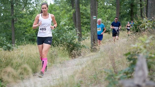 Triexpert Cup letos pořádá už 25. ročník. Běžci můžou závodit až na šestnácti trasách.