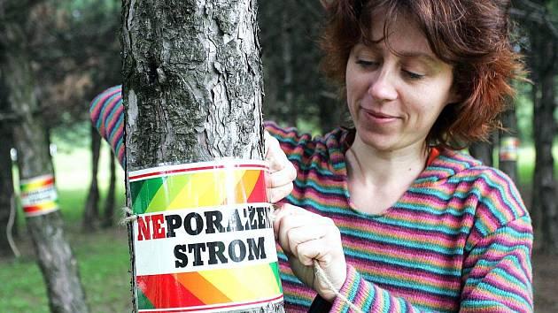 Ekologové se snažily stromy zachránit. Marně.
