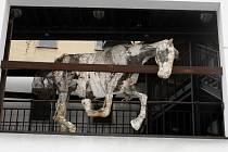 Koně, vyrobeného z drátů, síťovin, sádry a papíru velice rychle ubývá vlivem měnících se klimatických podmínek.