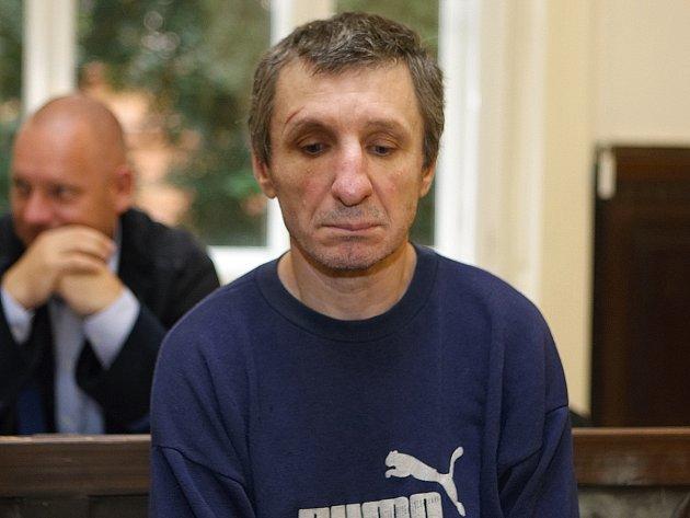 Obžalovaný Roman Šváb u brněnského krajského soudu. K vraždě důchodkyně v Pršticích na Brněnsku se přiznal.