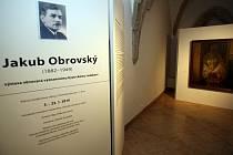 Výstava Jakuba Obrovského. Ilustrační foto.
