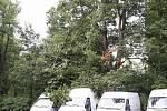 Dopravu v městě Brně zkomplikovaly silné pondělní deště. K nejvíce problémům vyjížděli hasiči do městských částí na východě města. Zasahovali ale také na desítkách míst po celé jižní Moravě.