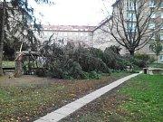 Hasiči zažili extrémně pernou neděli se stovkami výjezdů. Nejvíc jich měli v Brně a na Blanensku.