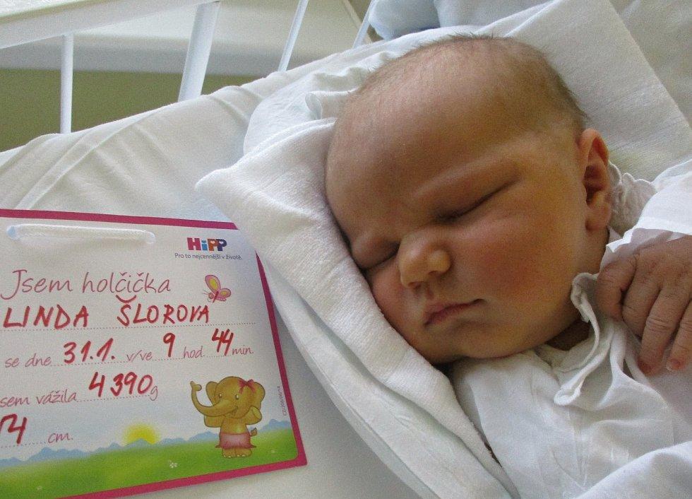 Linda Šlorová, 31. 1. 2021, Šakvice, Nemocnice Břeclav, 4390 g, 54 cm