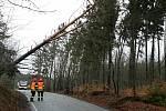 Silný vítr dosahuje na jižní Moravě v nárazech až k devadesátikilometrové rychlosti. Hasiče zaměstnávají spadlé stromy přes silnice, řidičům komplikují dopravu.