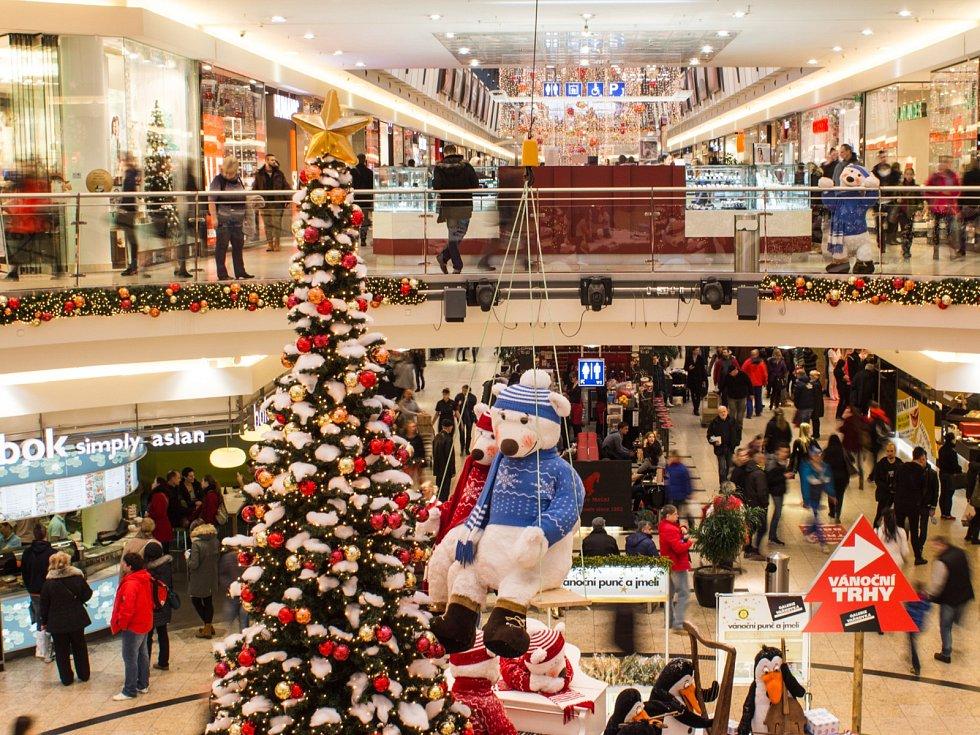 Nákupy v období Vánoc - Ilustrační foto