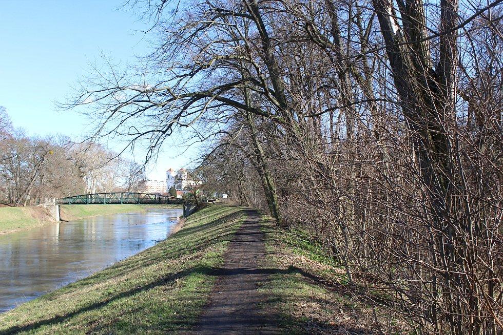 Dolní část zámeckého parku ve Veselí nad Moravou - bažantnice.
