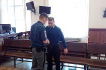 Roman Robeš z Brna dostal u krajského soudu šestnáct let vězení za to, že předloni v listopadu málem ubil k smrti svou tehdejší přítelkyni. Důvodem byla žárlivost, žena si prý hledala bydlení s jiným mužem.