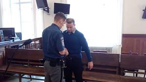 Roman Robeš z Brna dostal u krajského soudu šestnáct let vězení za to, že málem ubil přítelkyni.