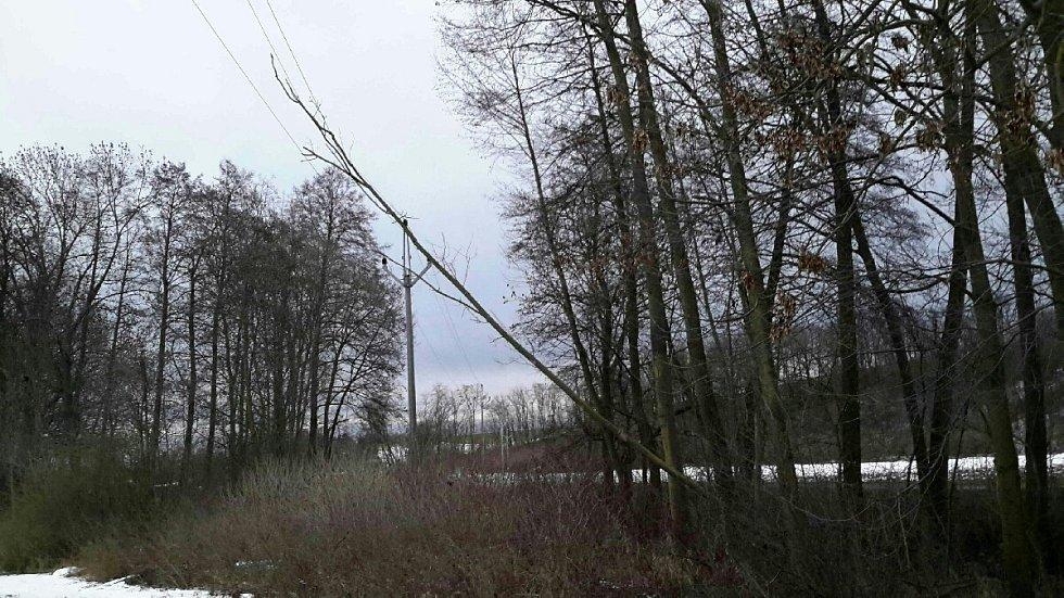 Jižní Moravu opět potrápil silný vítr. Hasiči v kraji likvidovali popadané stromy, zabezpečovali střechy.