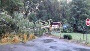 Pernou noc mají za sebou jihomoravští hasiči. Noční bouřka, která se ve čtvrtek kolem třetí nad ránem prohnala krajem, po sobě zanechala množství popadaných stromů i zatopenou ulici.