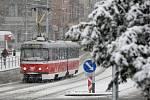 Leden 2019 - sněhová nadílka v brněnských ulicích.