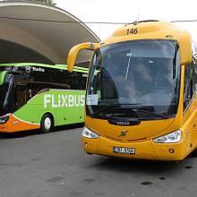 Z Brna do Prahy nově jezdí více spojů. Dopravce FlixBus přidal nové autobusy (do zelena). Chce porazit dominantní RegioJet (žluté).