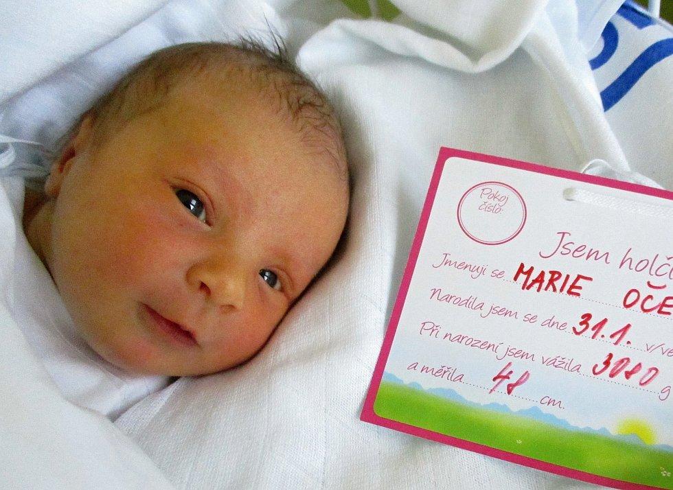 Marie Očenášková, 31. 1. 2021, Břeclav, Nemocnice Břeclav, 3080 G, 48 cm