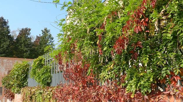 Léto se již v půli týdne přehouplo do podzimu.