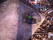 Na Červeném kopci leží i matrace, staré boty a skleněné láhve.
