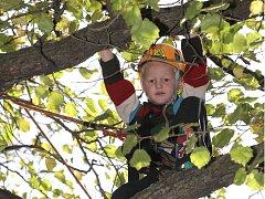Poznávání listů nebo lezení po stromech či lanech. Nejen to nabídla páteční oslava Dne stromů v brněnských Lužánkách.