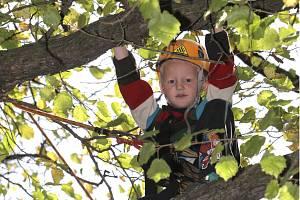 Poznávání listů nebo lezení po stromech či lanech. Ilustrační foto