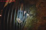 Při přelézání plotu zakončeného hroty se kalhotami zachytil. Ty se mu částečně stáhly a zůstal viset se zaklíněnou nohou, a navíc ještě hlavou dolů.