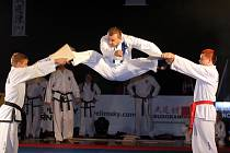 Desátý ročník přehlídky bojových sportů Budoshow 2007 v Brně