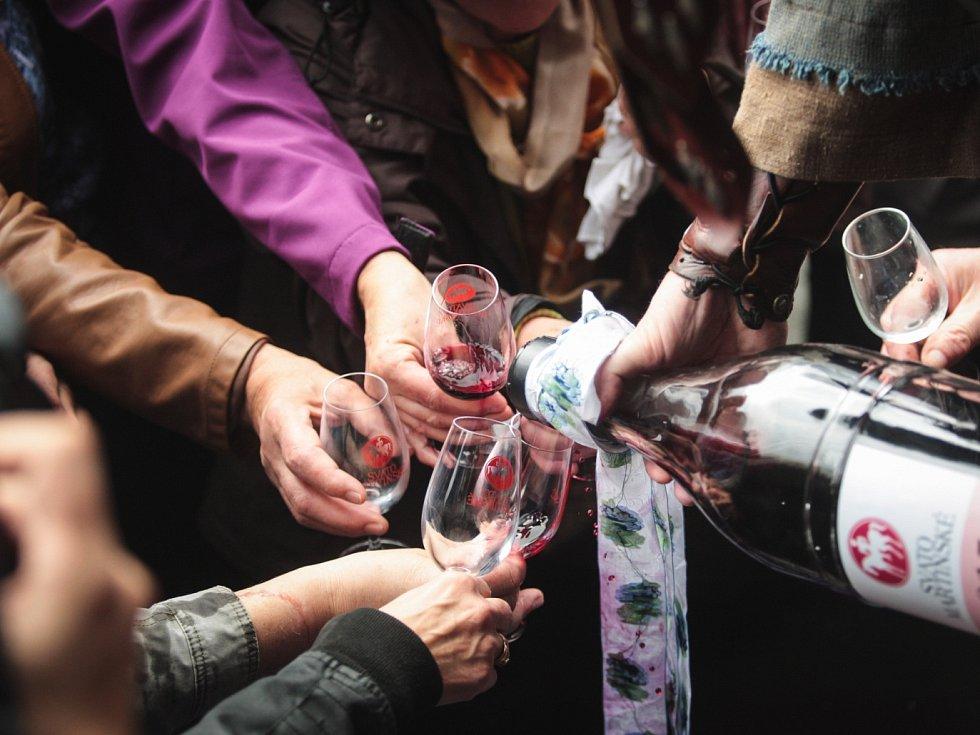 Svatomartinské víno. Ilustrační foto.